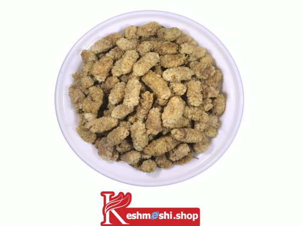 Dry Berries-orghabe-keshmeshi.shop-توت خشک نقلی(یزد)